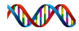 dna_PNG52